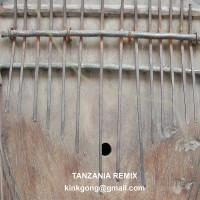Tanzania Kink Gong Remix